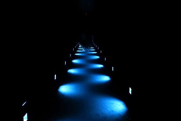 光の空間を足と目で楽しむ